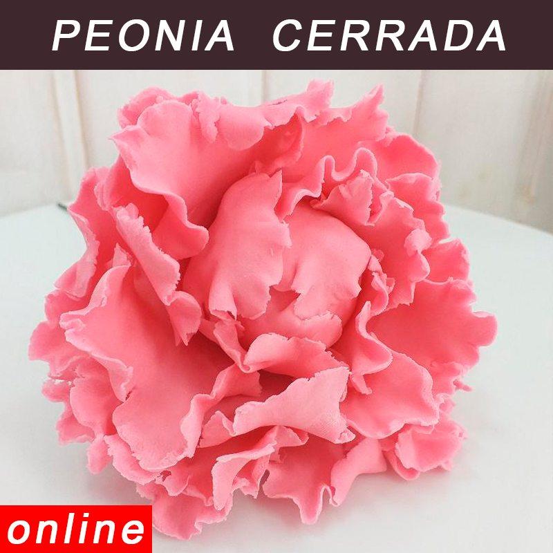 modelado peonia